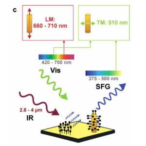 Selective plasmonic platforms